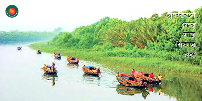 Fishing started again in the Sundarbans